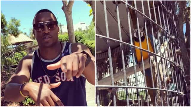 rap kjønn videoer stor Dick tranny eskorte